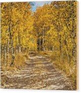 Lundy Canyon Pathway Wood Print