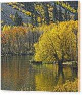 Lundy Lake In Fall Wood Print