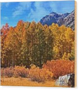 Lundy's Fall Show Wood Print
