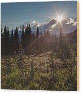 Lupine Field Sunstar Wood Print