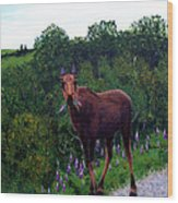 Lupine Loving Moose Wood Print