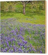 Lupine Oak Wood Print