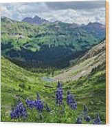 Lupine Over Valley Wood Print
