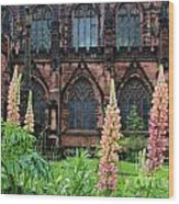 Lupines At Chester Cathedral 6805 Wood Print