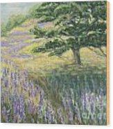 Lupines In May Wood Print