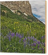 Lupines On The Hillside Wood Print