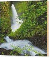Lush Gorge Falls Wood Print