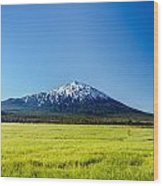 Lush Green Meadow And Mount Bachelor Wood Print