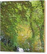 Luss Waters Wood Print