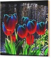 Lustrous Tulips Wood Print