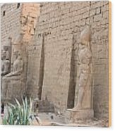 Luxor Temple Wood Print