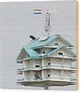 Luxury  Bird Apartment Wood Print