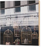Lv Gilded Cage Bags Wood Print
