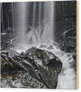 Lwv20052 Wood Print