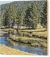 Lyell Canyon Wood Print
