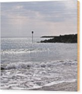 Lyme Regis Seascape - March Wood Print