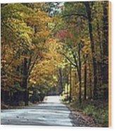 Lynn Run Pa Wood Print