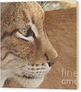 Lynx Profile Wood Print