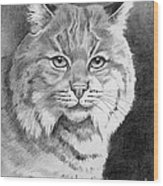 Lynx Wood Print by Suzanne Schaefer