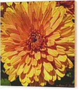 M Bright Orange Flowers Collection No. Bof7 Wood Print