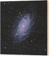 M33--the Triangulum Galaxy Wood Print