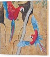 Macaw Claylick Wood Print