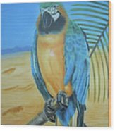 Macaw On A Limb Wood Print