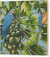 Macaw Parrots In Papaya Tree Wood Print