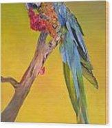 Macaw's Dream Wood Print