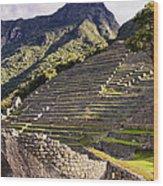 Macchu Picchu - Peru   Wood Print