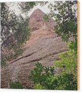 Machete Ridge Wood Print