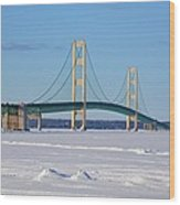 Mackinac In March Wood Print