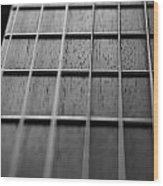 Macro Guitar Strings Wood Print