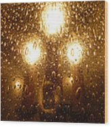 Macro Lights Wood Print