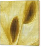 Macro Of A Lemon Slice Wood Print