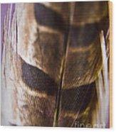 Macro Pheasant Wood Print