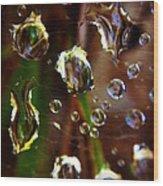 Macro Rain Wood Print