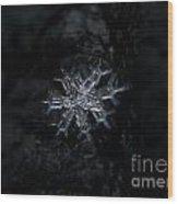 Macro Snowflake Wood Print