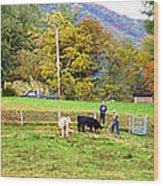 Mac's Farm In Balsam Grove 2 Wood Print