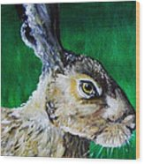 Mad As A March Hare Wood Print by Stacey Clarke