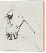 Mad Horse Wood Print