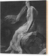 Madame Recamier Wood Print