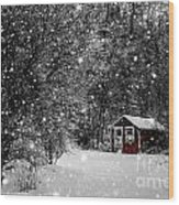 Made In Maine Winter  Wood Print