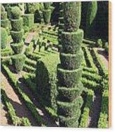 Madeira Botanic Gardens Topiary Wood Print
