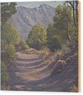 Madera Canyon Wood Print