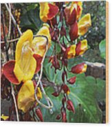 Madikiri - Phool Wood Print