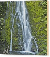 Madison Creek Falls #1 Wood Print