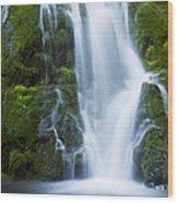 Madison Creek Falls #2 Wood Print