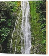 Madison Creek Falls Wood Print