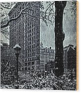 Madison Square And The Flatiron Building Wood Print